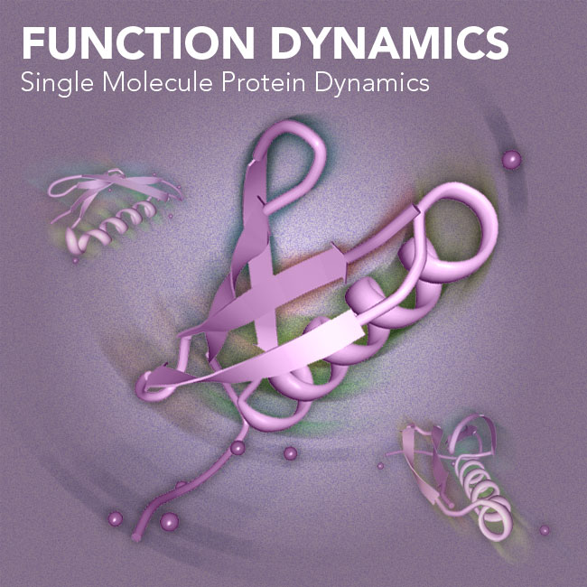 Illustration of Function Dynamics